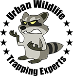 los-angeles-animal-removal-by-urban-wildlife-trapping-experts