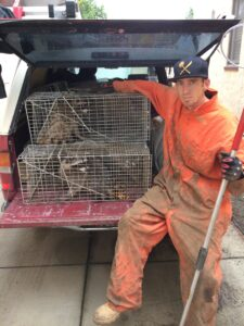Wildlfie & Animal Removal, Trapping, Control Services